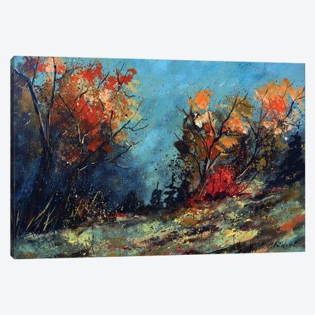 Misty autumn Canvas Print #LDT118} by Pol Ledent Canvas Artwork