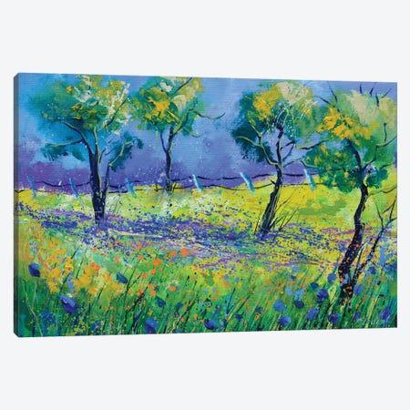 Happy spring Canvas Print #LDT126} by Pol Ledent Canvas Artwork