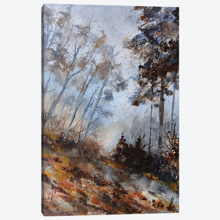 Misty november Canvas Print #LDT138} by Pol Ledent Canvas Artwork