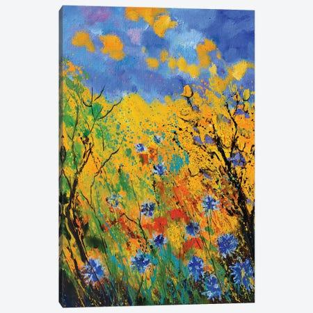 Blue cornflowers - 452020 Canvas Print #LDT141} by Pol Ledent Canvas Art Print