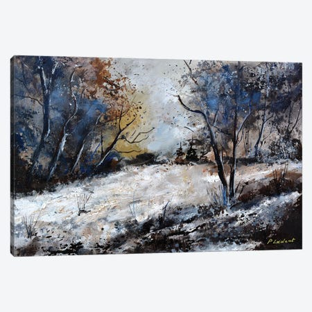 Winter in the wood - 542020 Canvas Print #LDT143} by Pol Ledent Canvas Art Print