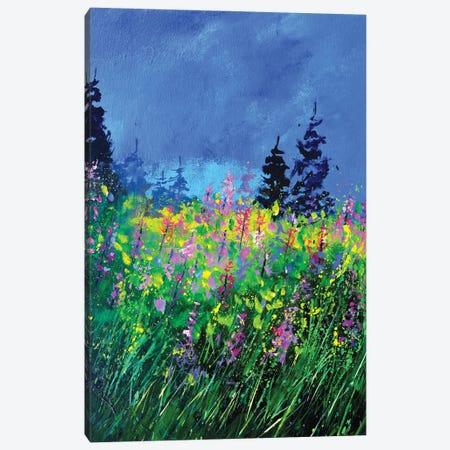 Epilobiums Canvas Print #LDT150} by Pol Ledent Canvas Wall Art