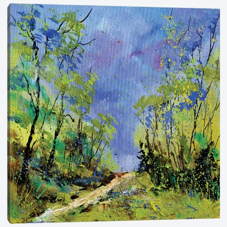 Spring Path Canvas Print #LDT189} by Pol Ledent Canvas Print