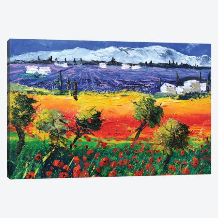 Red Poppies In Provence Canvas Print #LDT18} by Pol Ledent Canvas Art