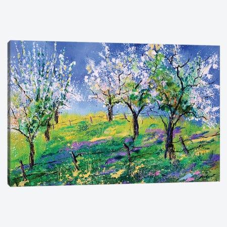 Orchard In Spring Canvas Print #LDT198} by Pol Ledent Canvas Artwork