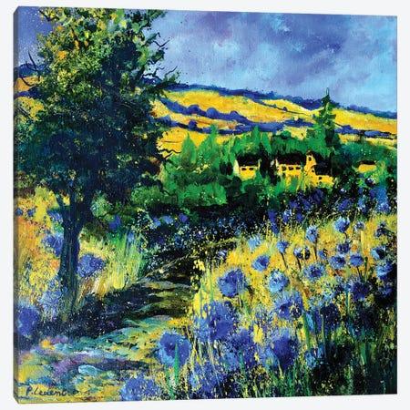 Blue Path Canvas Print #LDT202} by Pol Ledent Canvas Wall Art