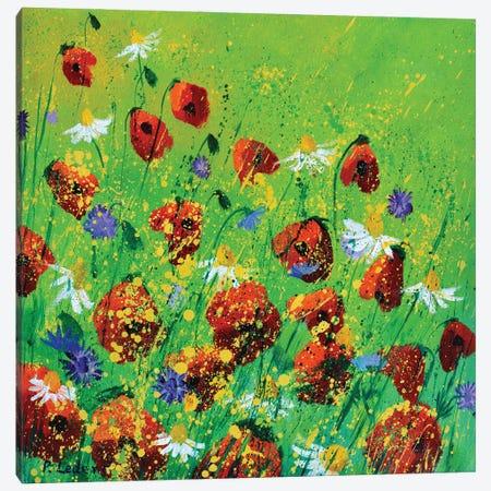 Red Poppies Canvas Print #LDT203} by Pol Ledent Canvas Art