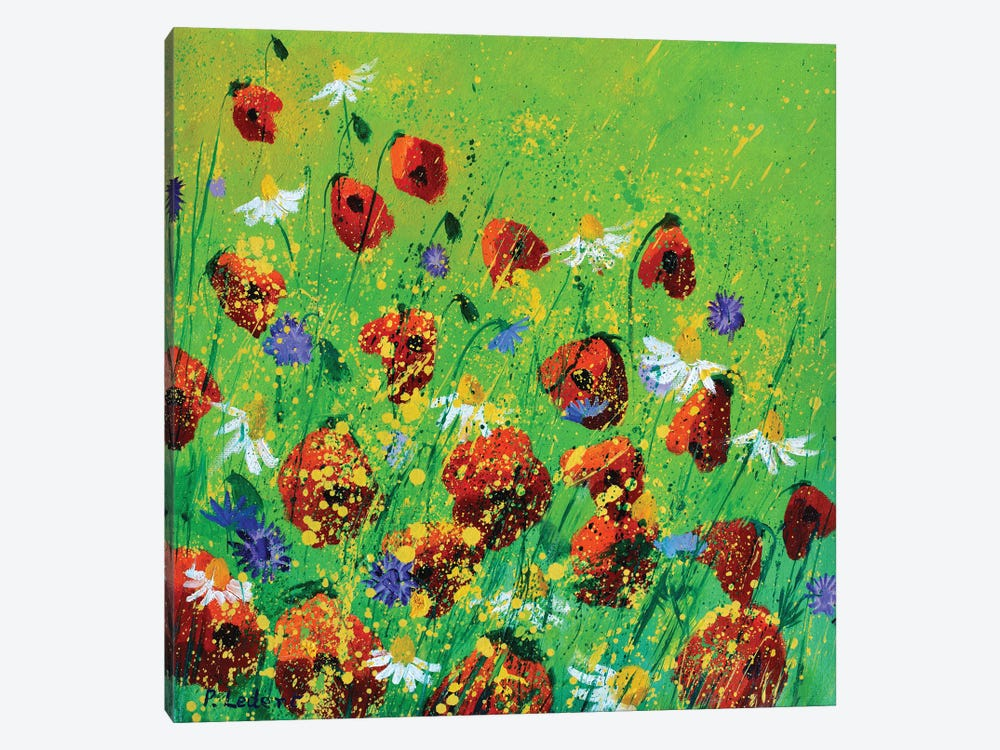 Red Poppies by Pol Ledent 1-piece Canvas Art Print