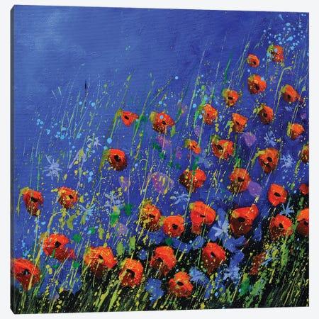 Poppies Canvas Print #LDT213} by Pol Ledent Art Print