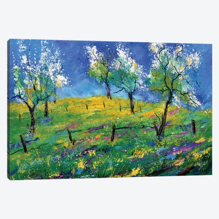 Orchard In Spring Canvas Print #LDT21} by Pol Ledent Canvas Art Print