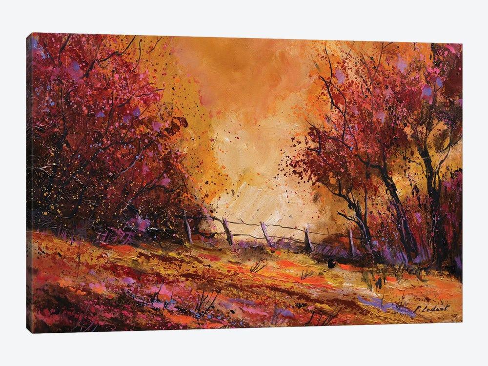 Autumn Light by Pol Ledent 1-piece Canvas Print