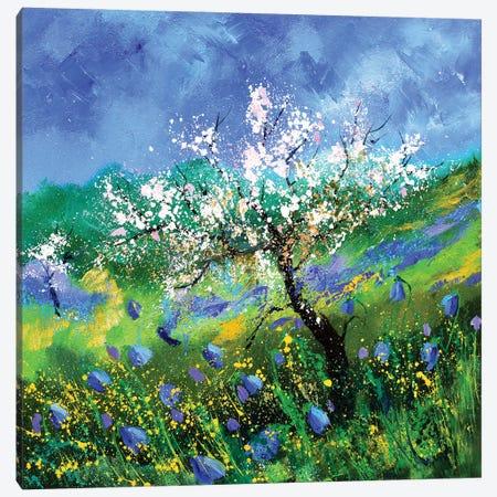 Blossoming Apple Tree Canvas Print #LDT226} by Pol Ledent Canvas Print