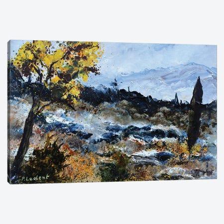 Dry Provence Canvas Print #LDT230} by Pol Ledent Canvas Print