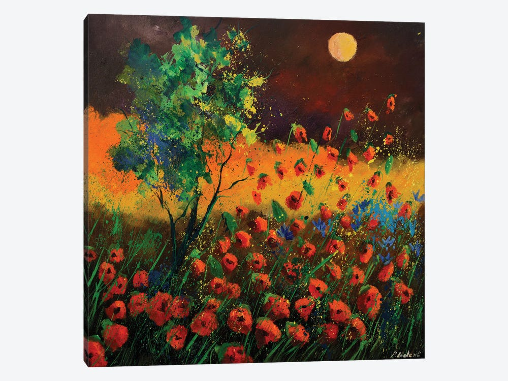 Red Poppies At Moonshine by Pol Ledent 1-piece Canvas Art Print