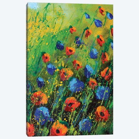 Red And Blue Poppies - 34 Canvas Print #LDT240} by Pol Ledent Canvas Wall Art