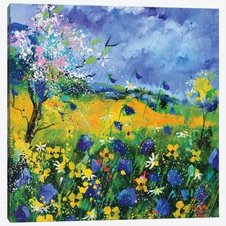 Wild Flowers In Summer Canvas Print #LDT244} by Pol Ledent Art Print