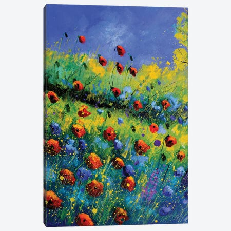 Poppies And Poppies Canvas Print #LDT263} by Pol Ledent Canvas Wall Art