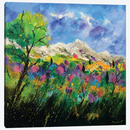 Pink Provence Canvas Print #LDT27} by Pol Ledent Canvas Art