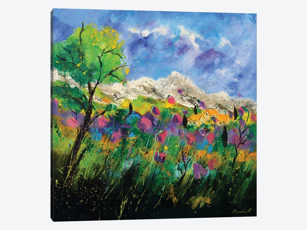 Pink Provence by Pol Ledent 1-piece Canvas Art Print