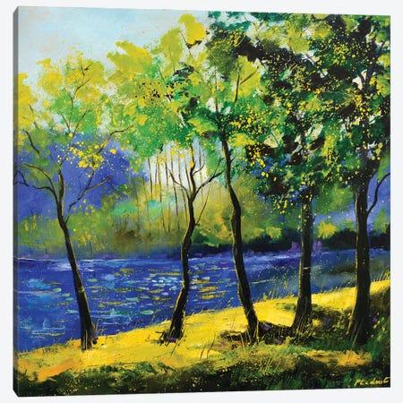 Blue River Canvas Print #LDT28} by Pol Ledent Canvas Art Print