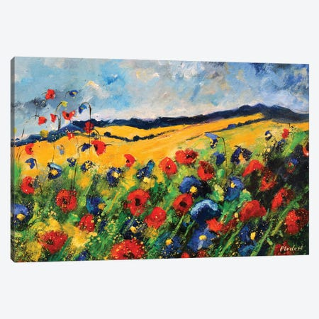 Red And Blue Poppies Canvas Print #LDT304} by Pol Ledent Canvas Artwork