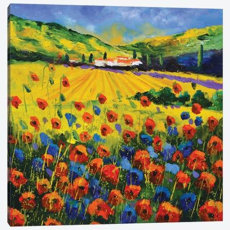 Red Poppies In Malaucene Canvas Print #LDT320} by Pol Ledent Art Print