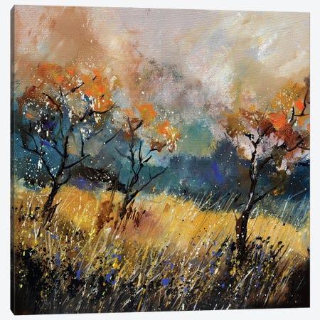Autumnal Landscape Canvas Print #LDT329} by Pol Ledent Art Print