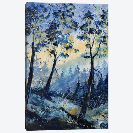 Winter light in the wood Canvas Print #LDT56} by Pol Ledent Art Print