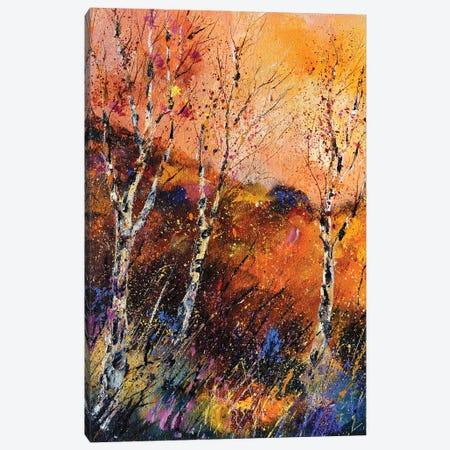 Three aspen trees Canvas Print #LDT74} by Pol Ledent Art Print
