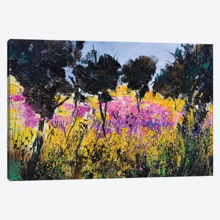 Epilobiums near Hileau Canvas Print #LDT77} by Pol Ledent Canvas Art Print