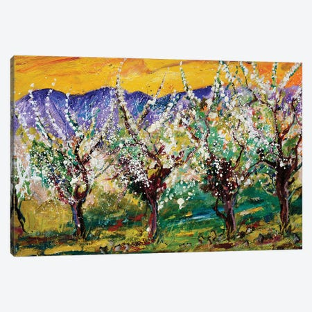 Spring Canvas Print #LDT8} by Pol Ledent Canvas Wall Art