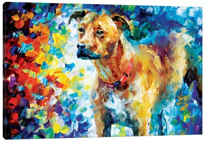 Dog III Canvas Art Print