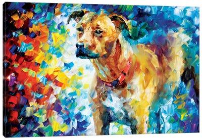 Dog III Canvas Print #LEA21