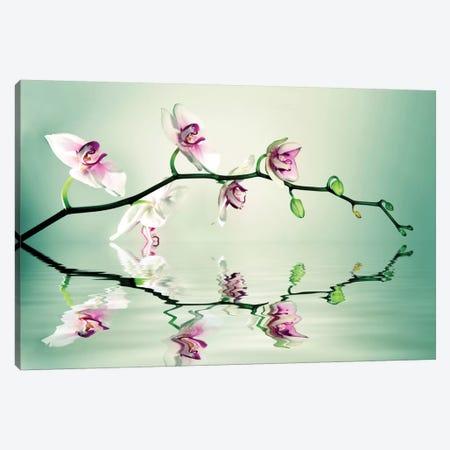 Zen Canvas Print #LEE10} by Lee Sie Canvas Art
