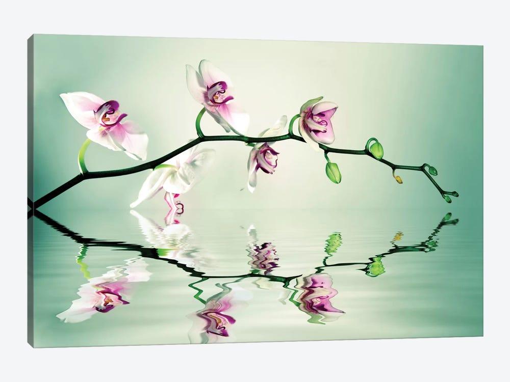 Zen by Lee Sie 1-piece Art Print