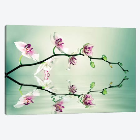 Zen Canvas Print #LEE10} by Lee Sie Canvas Art