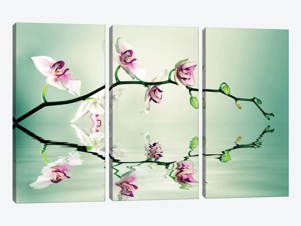 Zen by Lee Sie 3-piece Canvas Print