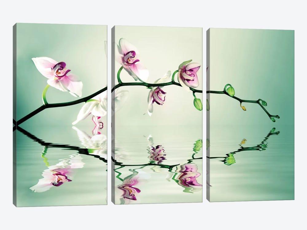 Zen by Lee Sie 3-piece Canvas Print