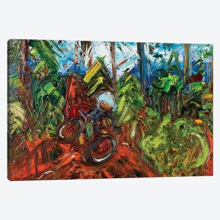 Mt Mitchell Off-Road Canvas Print #LEG31} by Shalimar Legaspi Canvas Wall Art
