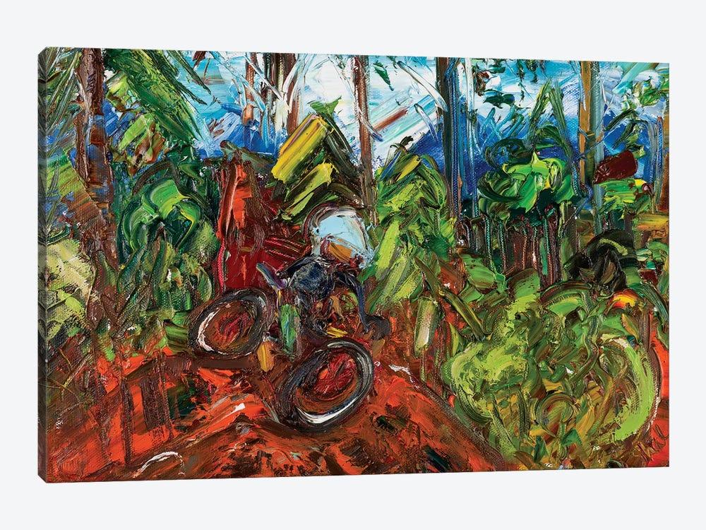 Mt Mitchell Off-Road by Shalimar Legaspi 1-piece Canvas Art Print
