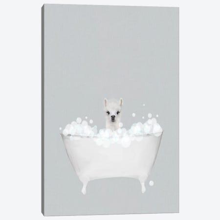 Alpaca Blue Bath 3-Piece Canvas #LEH12} by Leah Straatsma Canvas Art Print