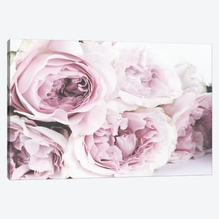 Roses Canvas Print #LEH135} by Leah Straatsma Canvas Art