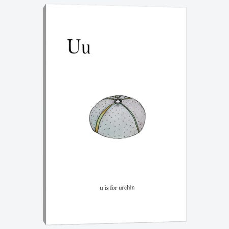 U is For Urchin Canvas Print #LEH157} by Leah Straatsma Canvas Wall Art