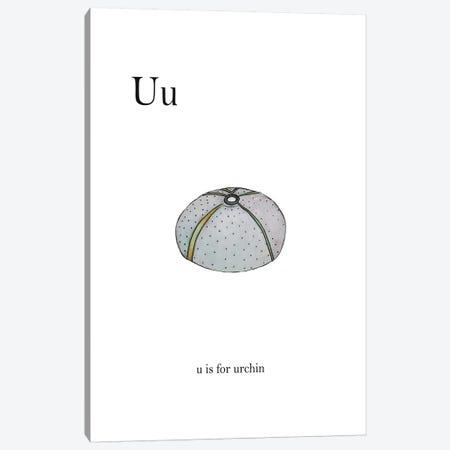 U is For Urchin Canvas Print #LEH157} by Leah Straatsma Canvas Wall Art