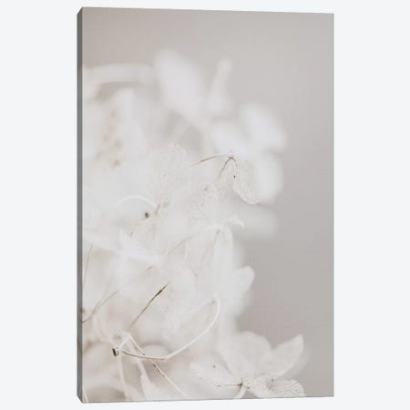 White Wildflowers 3-Piece Canvas #LEH174} by Leah Straatsma Canvas Artwork