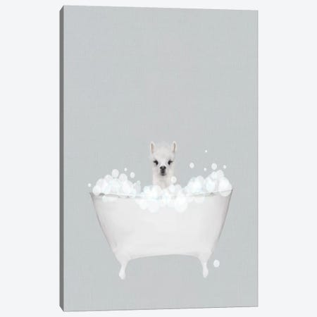 Alpaca Blue Bath Canvas Print #LEH191} by Leah Straatsma Art Print
