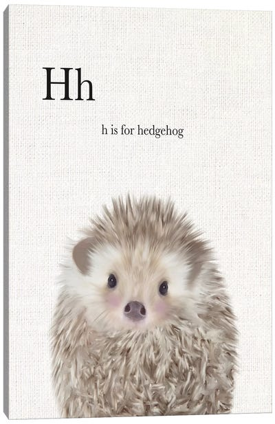Baby Hedgehog Linen Canvas Art Print