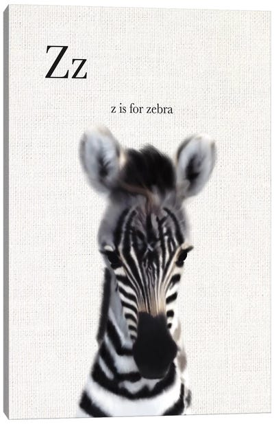 Baby Zebra Linen Canvas Art Print