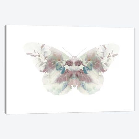 Butterfly II Canvas Print #LEH41} by Leah Straatsma Canvas Artwork