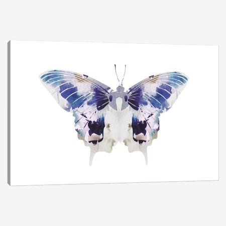 Butterfly III Canvas Print #LEH42} by Leah Straatsma Canvas Wall Art